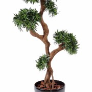 podocarpus-artificiel-tree-1
