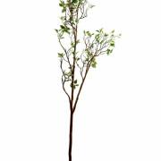feuillage-artificiel-ficus-growth-1