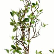 feuillage-artificiel-ficus-growth-2