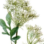 fleur-artificielle-ammi-majus-blanc-1