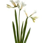 fleur-artificielle-fresia-blanc-2