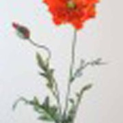fleur-artificielle-pavot-orange-1