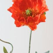 fleur-artificielle-pavot-orange-2