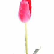 fleur-artificielle-tulipe-rose-2
