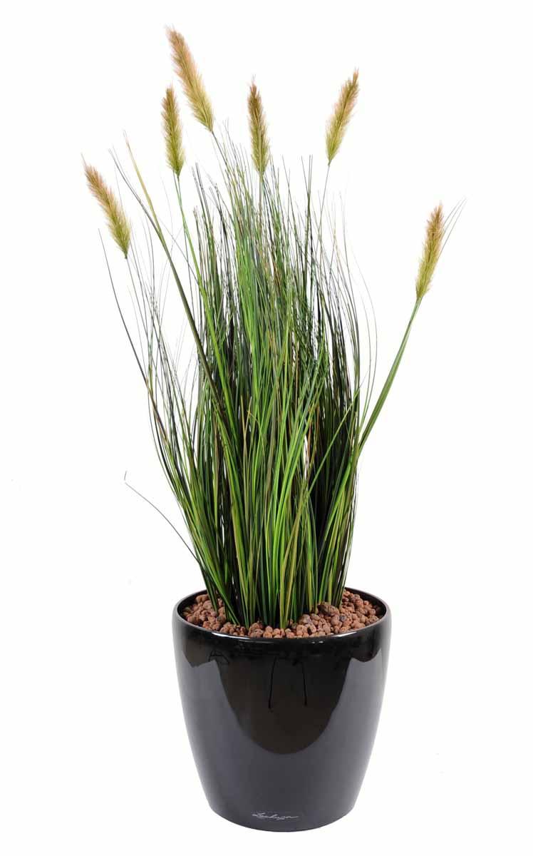 plante-artificelle-foxtail-1