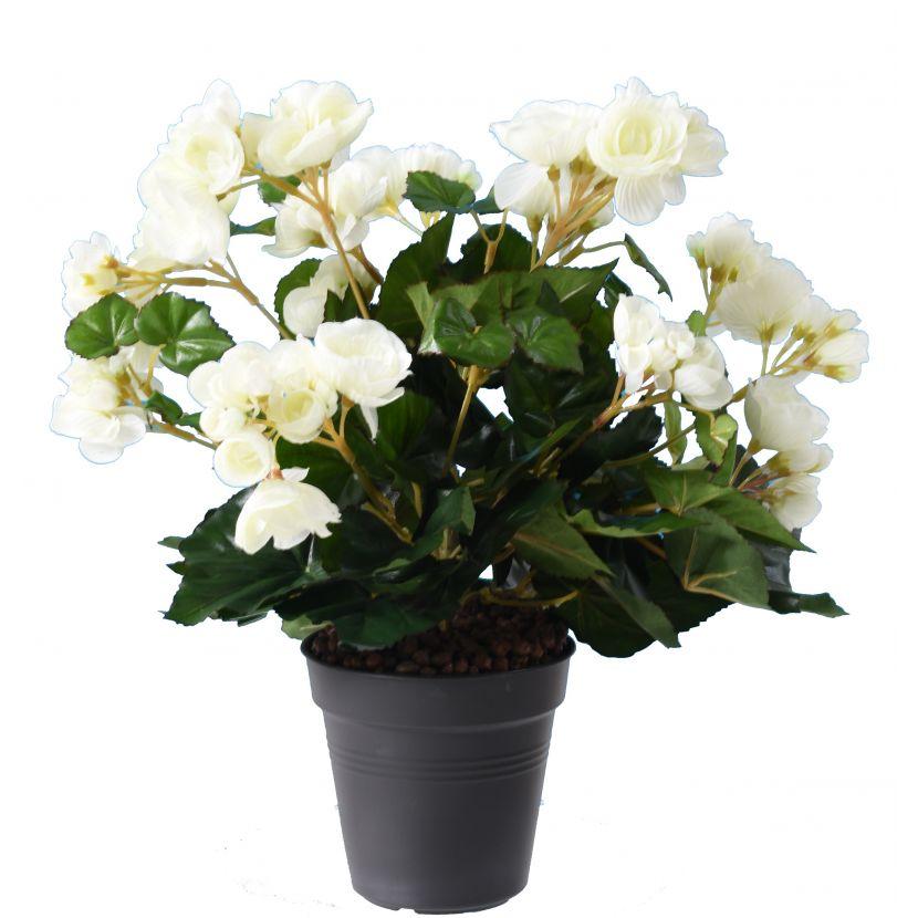 plante-artificielle-begonia-blanc-1