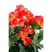 plante-artificielle-begonia-corail-2