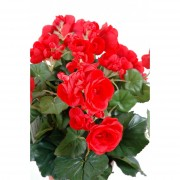 plante-artificielle-begonia-rouge-2