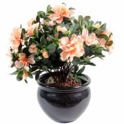 plante-artificielle-fleurie-azalee-peche-1