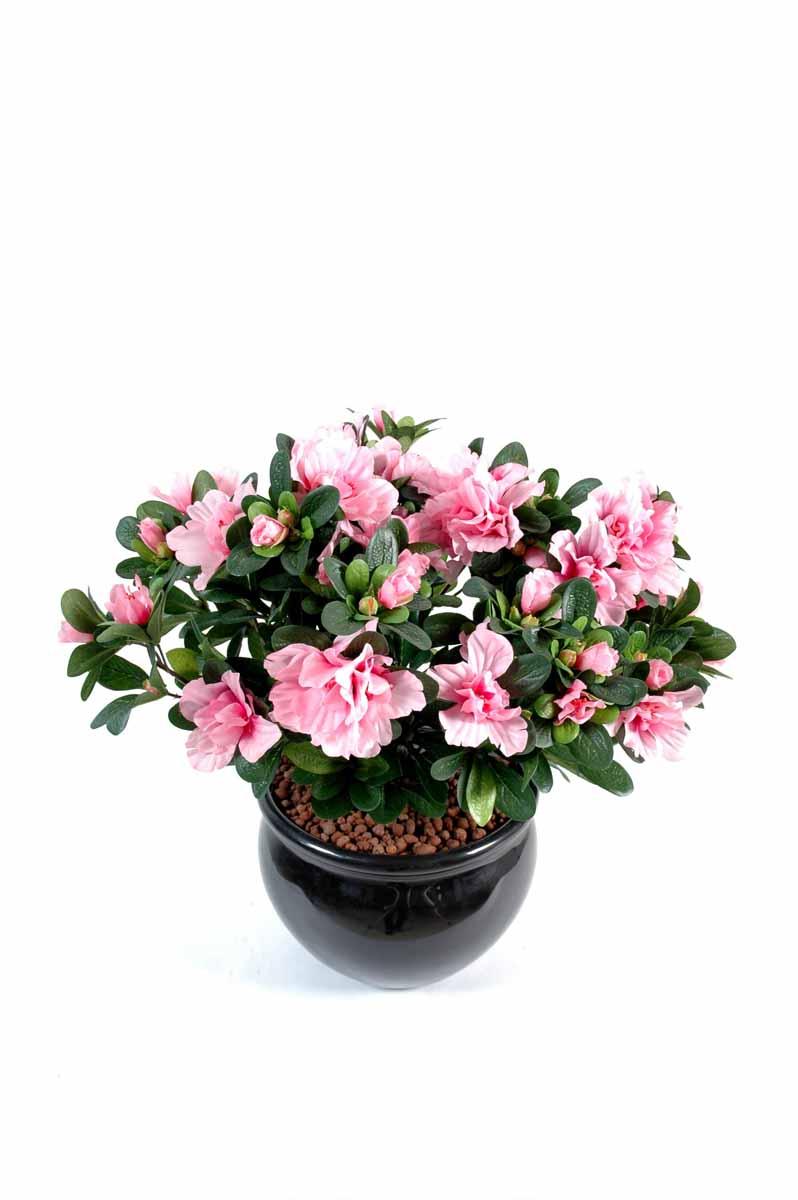 plante-artificielle-fleurie-azalee-rose-1