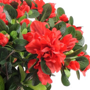 plante-artificielle-azalee-rouge-2