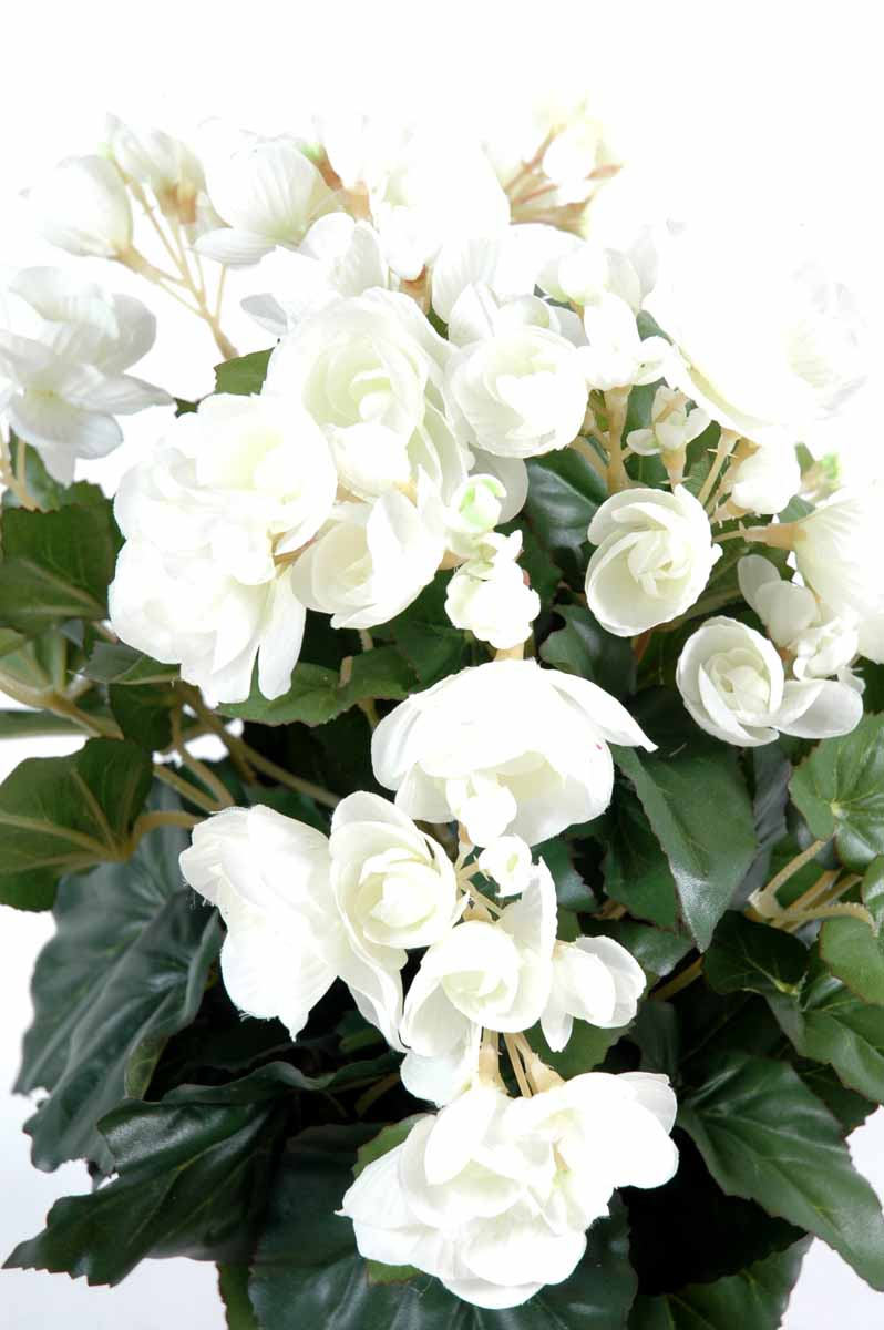 plante-artificielle-fleurie-begonia-blanc-1