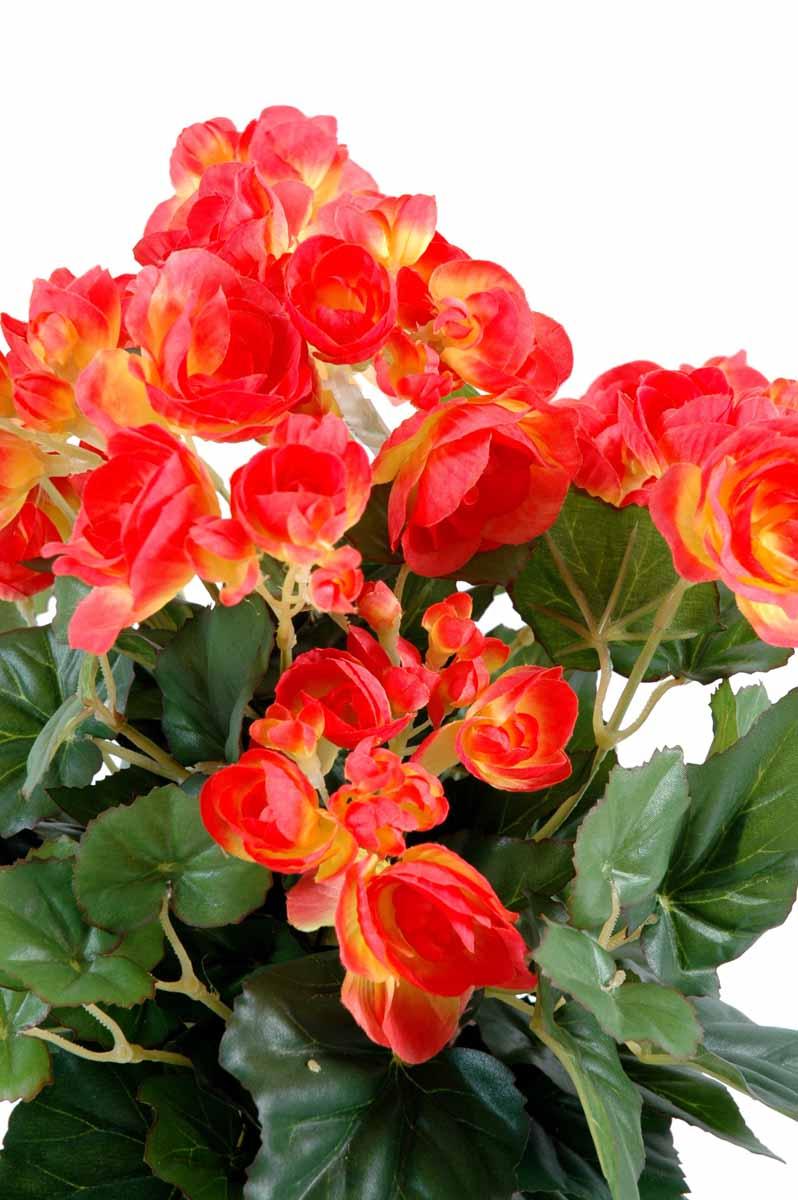 plante-artificielle-fleurie-begonia-corail-1