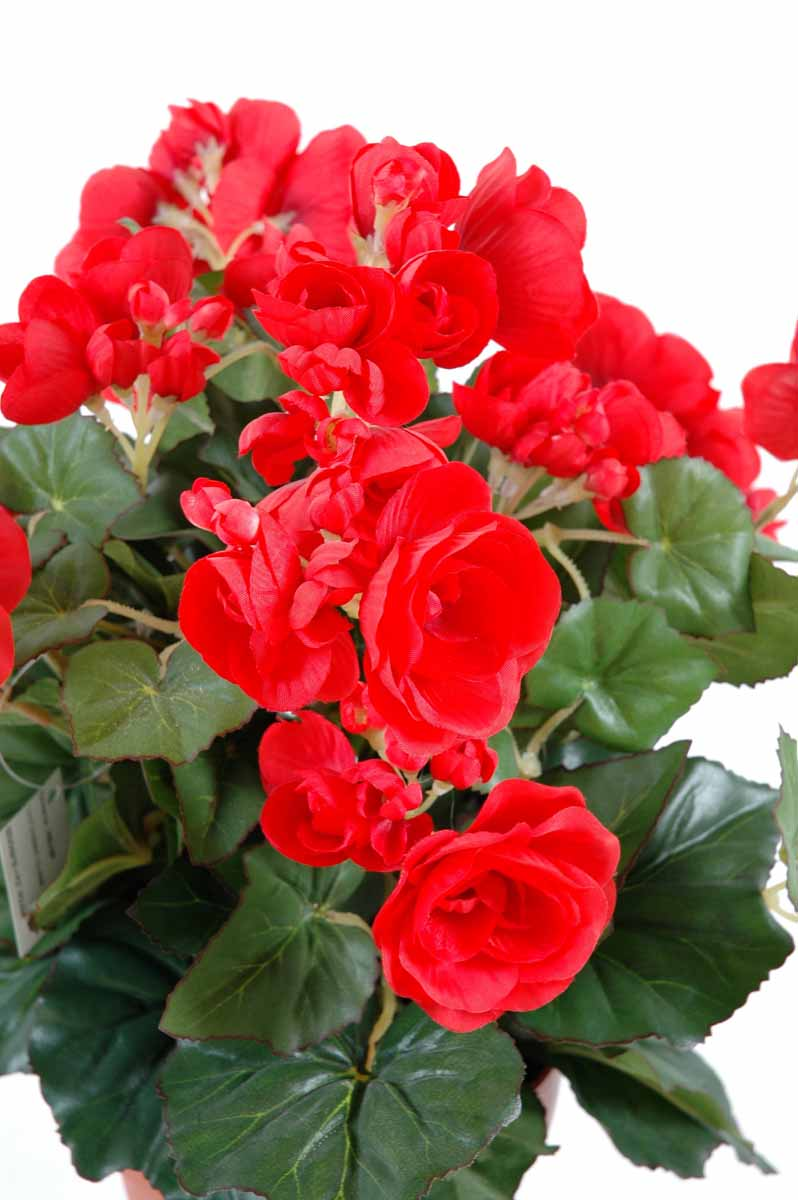 plante-artificielle-fleurie-begonia-rouge-1