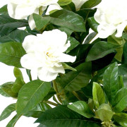 plante-artificielle-fleurie-gardenia-2
