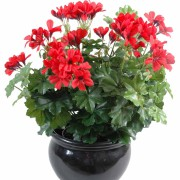 plante-artificielle-fleurie-geranium-lierre-rouge-1