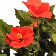 plante-artificielle-fleurie-hibiscus-rouge-2
