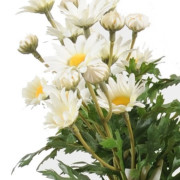 plante-artificielle-fleurie-marguerite-anthemis-2