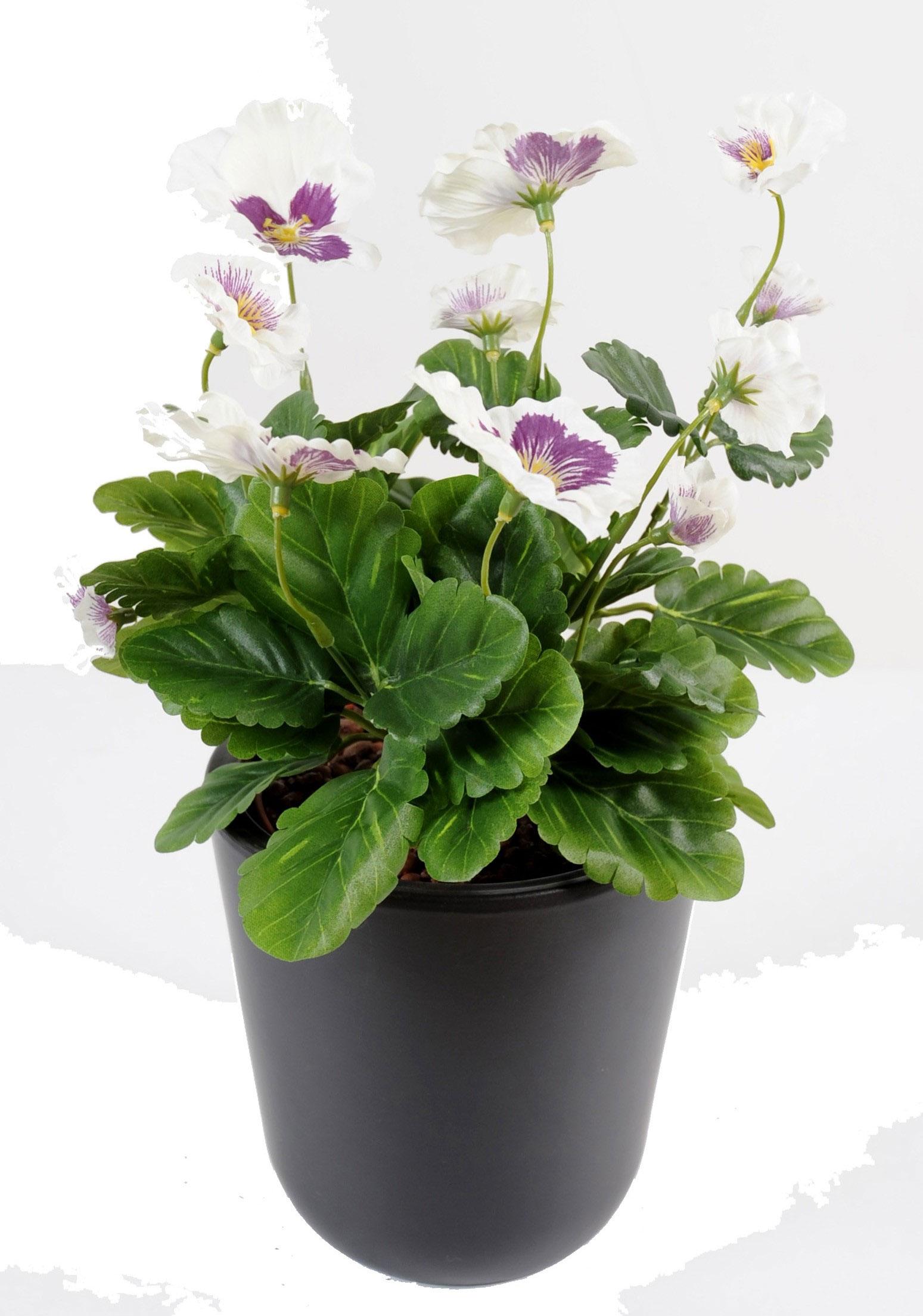plante-artificielle-fleurie-pensee-crème-mauve-1
