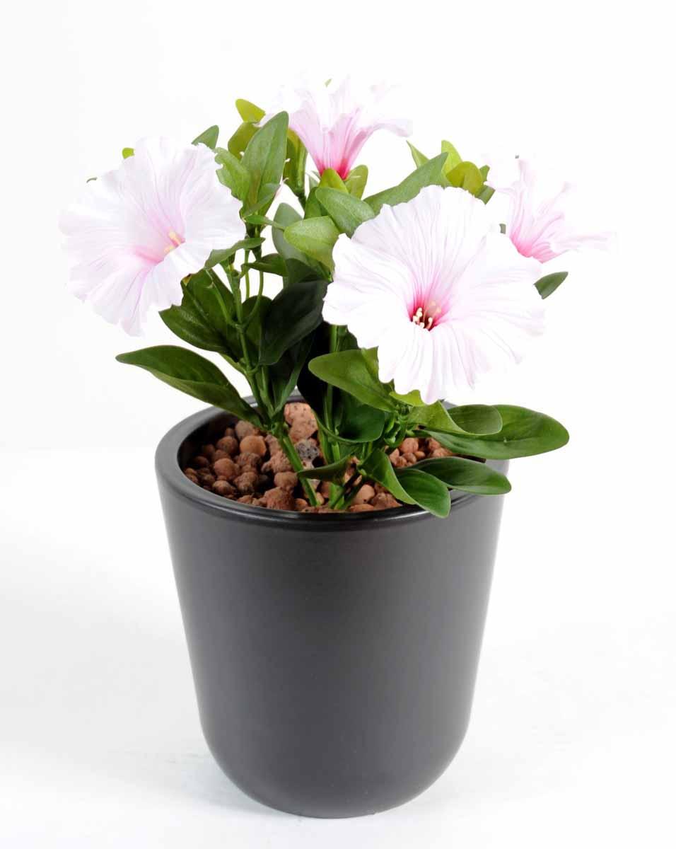 plante-artificielle-fleurie-petunia-blanc-rose-1