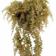 plante-artificielle-fougere-chute-plast-1