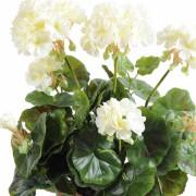 plante-artificielle-geranium-creme-2