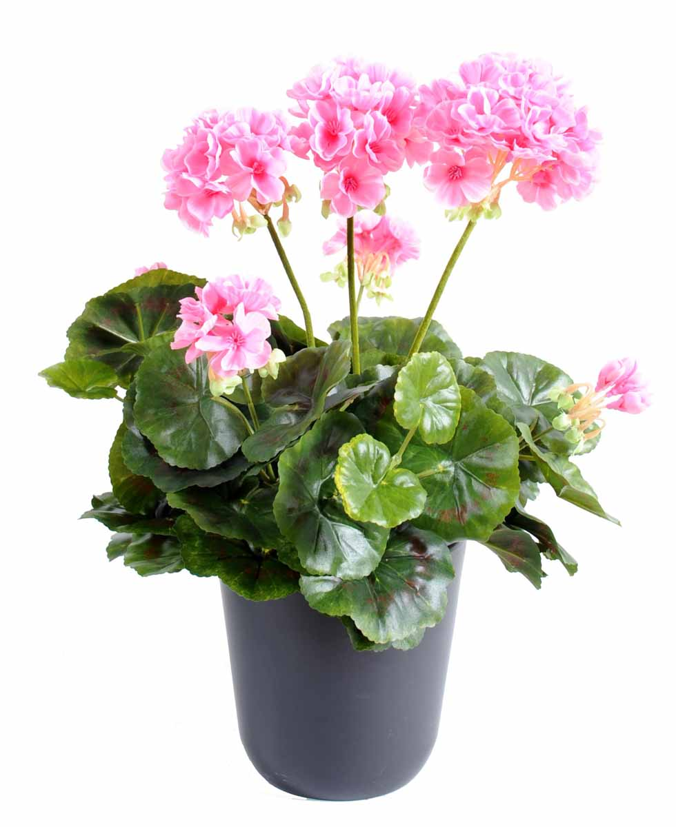 plante-artificielle-geranium-rose-1