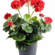 plante-artificielle-geranium-rouge-1