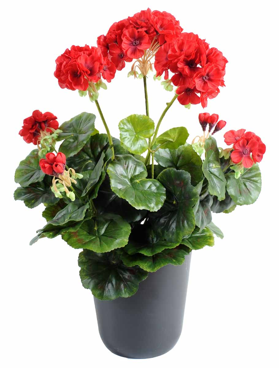 plante-artificielle-geranium-rouge-1