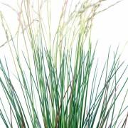 plante-artificielle-graminee-touffe-plast-2