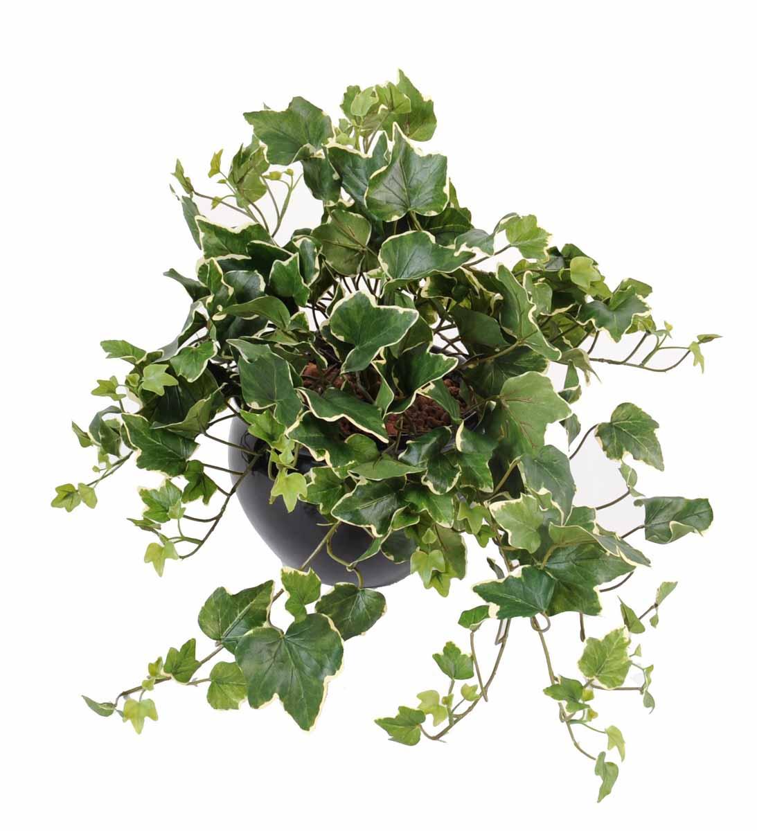 plante-artificielle-lierre-gala-panche-1