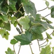 plante-artificielle-lierre-gala-panche-3