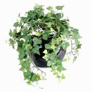 plante-artificielle-lierre-vert-1