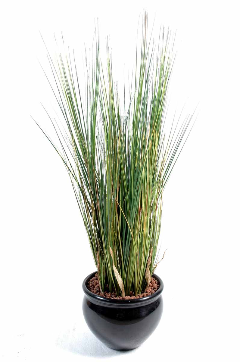 plante-artificielle-onion-grass-1