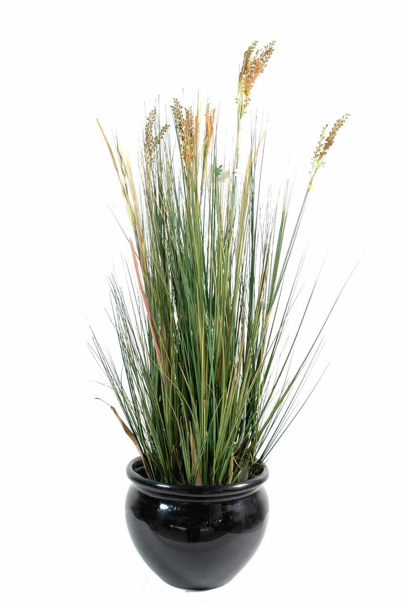 plante-artificielle-papyrus-scirpus-validus-1