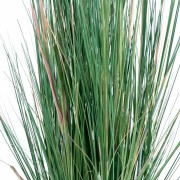 plante-artificielle-papyrus-scirpus-validus-2