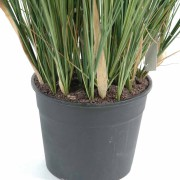 plante-artificielle-papyrus-scirpus-validus-4