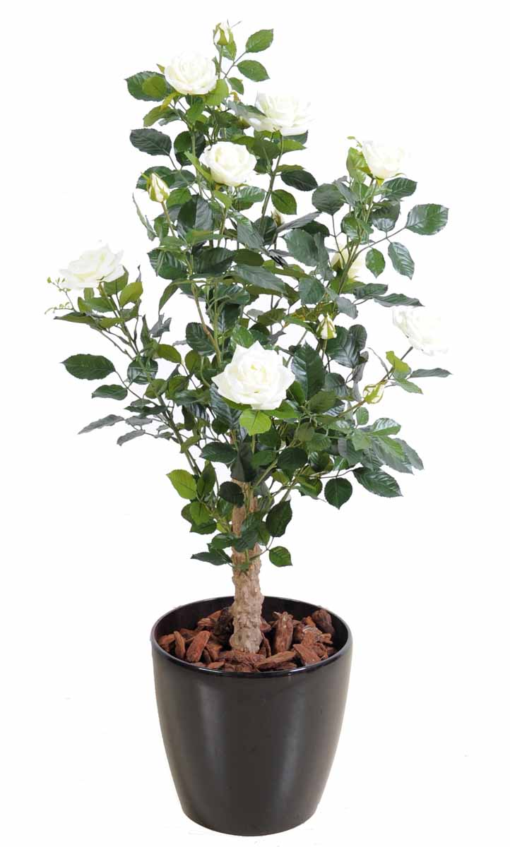 plante-artificielle-rosier-royal-arbuste-blanc-1