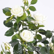 plante-artificielle-rosier-blanc-2
