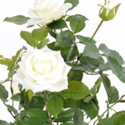 plante-artificielle-rosier-royal-blanc-2