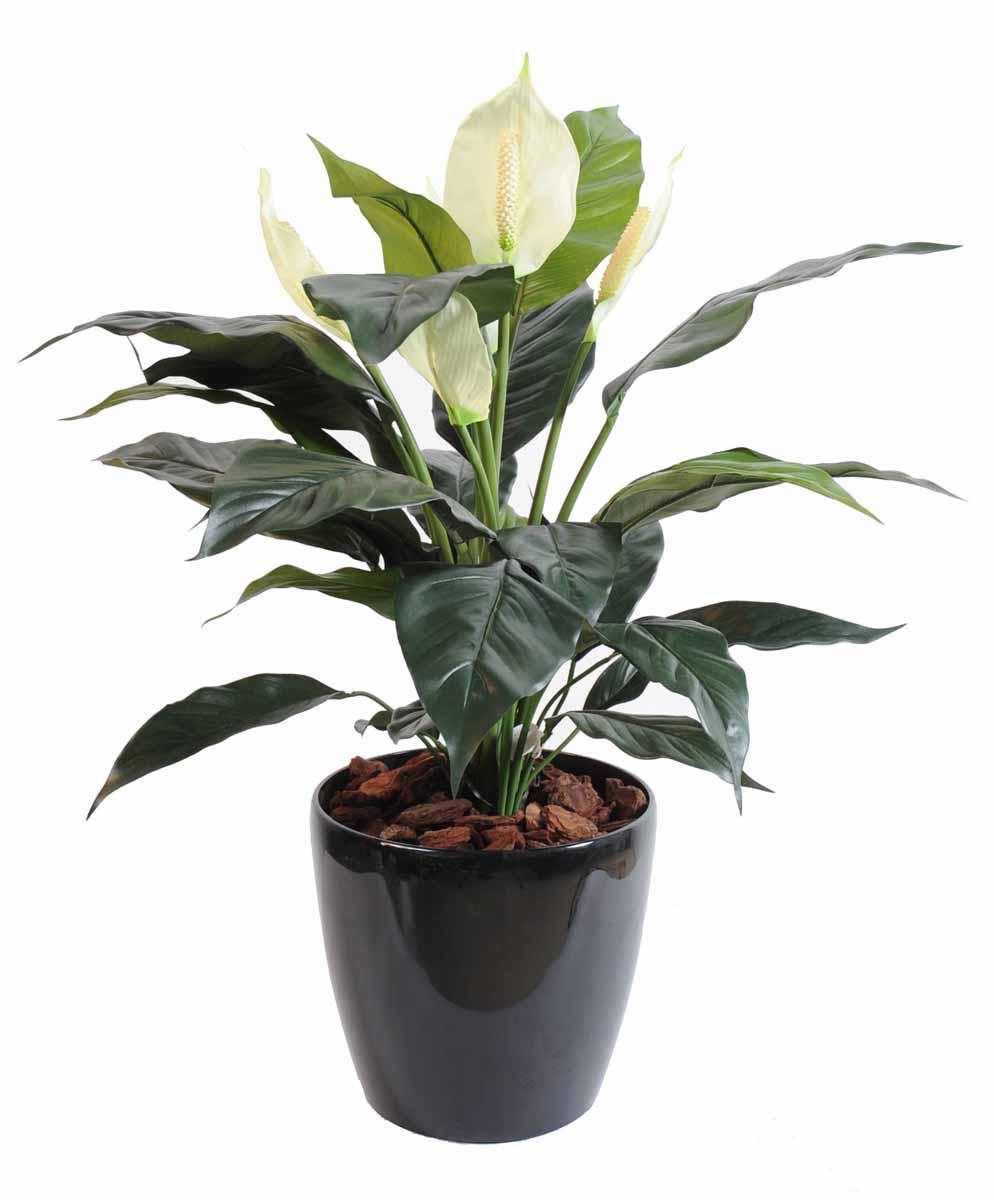 plante-artificielle-spathiphylium-3