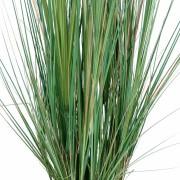 plante-artificielle-zanichellie-des-marais-3