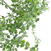 plantes-artificielle-callisia-plast-2