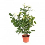 plante-artificielle-rosier-rose-claire-3410-18-1