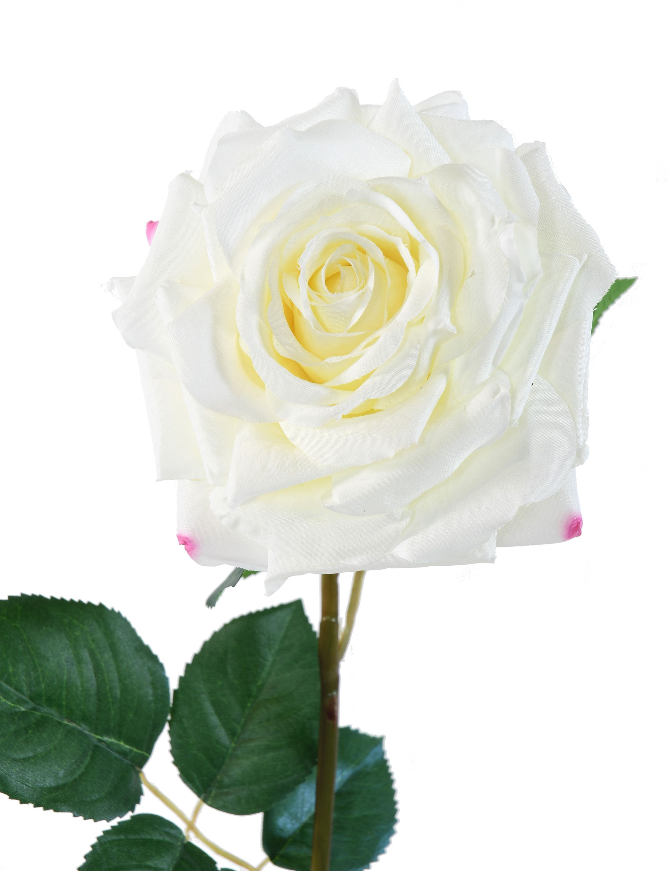 rose-artificielle-blanche-2-1