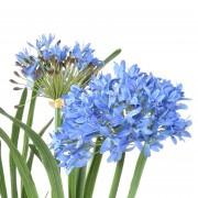 plante-artificielle-agapanthe-bleue-3146-80-3