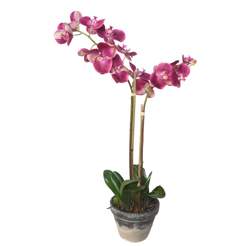 phalaenopsis-orchidee-artificielle-3138-1-31