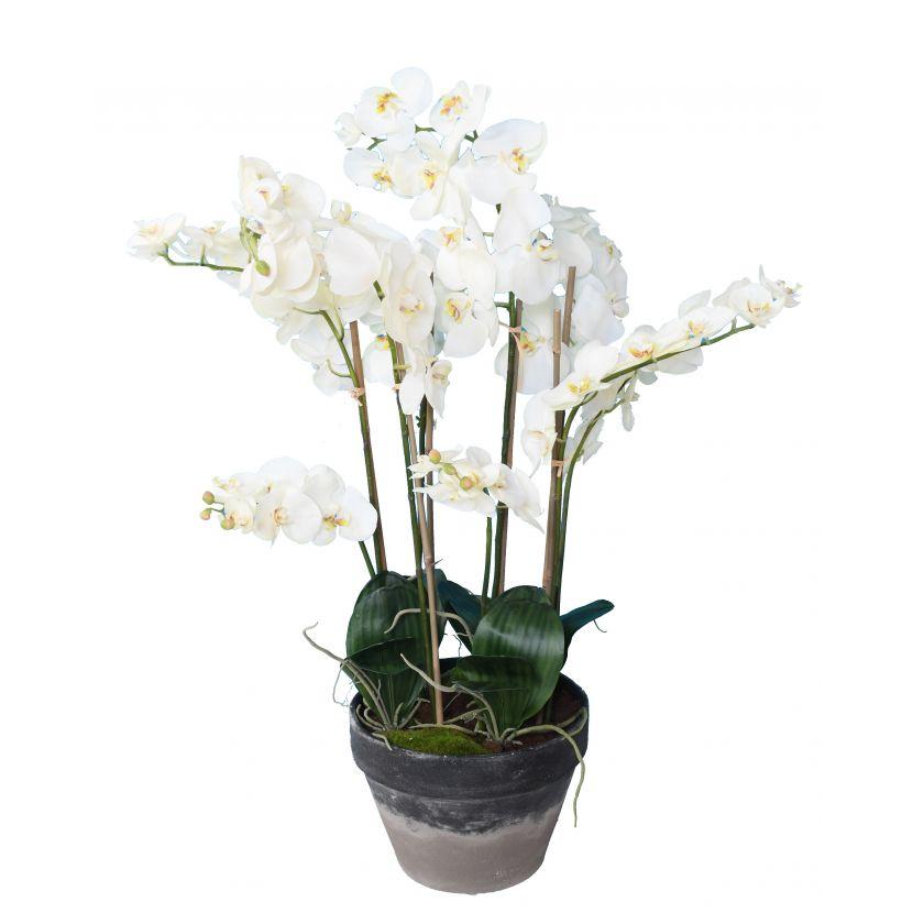 phalaenopsis-orchidee-artificielle-3139-58-1