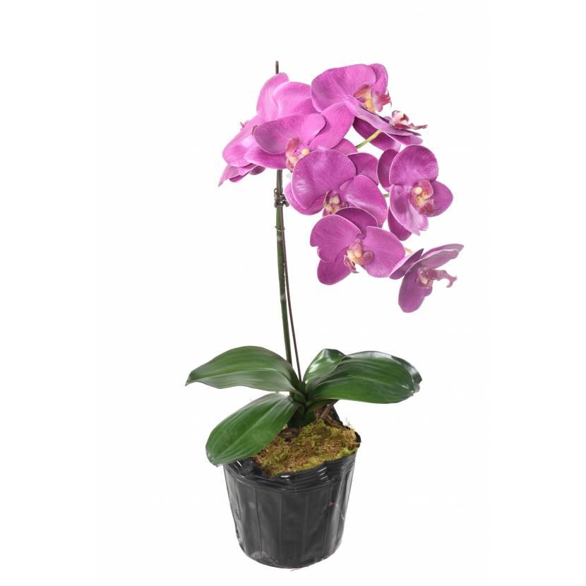 phalaenopsis-orchidee-artificielle-3145-24-1