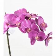 phalaenopsis-orchidee-artificielle-3145-24-3